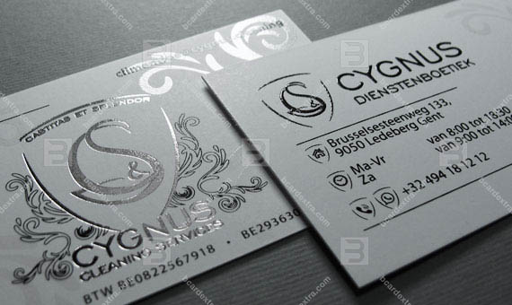 Business card «CYGNUS» - cleaning service business card photo